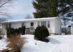 Foreclosed Home in Buena Vista 24416 164 HILLSIDE DR - Property ID: 4210652