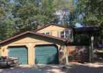 Foreclosed Home in Sterling 48659 829 S MELITA RD - Property ID: 4213705