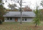 Foreclosed Home in Cadet 63630 10877 CANNON MINES RD - Property ID: 4214903