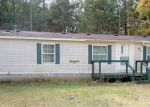 Foreclosed Home in Bitely 49309 1814 BYBEE CT - Property ID: 4214990
