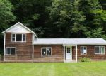Foreclosed Home in Shandaken 12480 49 BROADSTREET HOLLOW RD - Property ID: 4218019