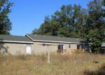 Foreclosed Home in Holton 49425 11600 NICHOLS RD - Property ID: 4218872