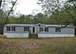 Foreclosed Home in Mineral 23117 1011 OLD APPLE GROVE RD - Property ID: 4218948