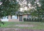 Foreclosed Home in Eufaula 36027 10 MANCUSO DR - Property ID: 4221956