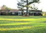 Foreclosed Home in Repton 36475 2742 HIGHWAY 136 E - Property ID: 4223998