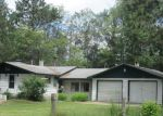 Foreclosed Home in Harrison 48625 1201 E STOCKWELL RD - Property ID: 4225460