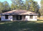 Foreclosed Home in Dunnellon 34432 17920 SW 40TH ST - Property ID: 4225712