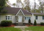 Foreclosed Home in Holmes 12531 52 SOUTH RD - Property ID: 4226529