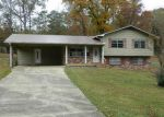 Foreclosed Home in Eastaboga 36260 302 SCENIC CIR - Property ID: 4230540