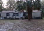 Foreclosed Home in Anthony 32617 13050 NE 44TH CT - Property ID: 4230658