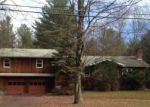Foreclosed Home in Monticello 12701 490 HAMILTON RD - Property ID: 4232259