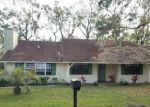 Foreclosed Home in Ormond Beach 32174 11 RIO PINAR TRL - Property ID: 4233878