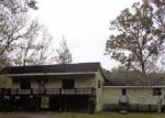 Foreclosed Home in Wewahitchka 32465 289 BYRD PARKER DR - Property ID: 4242723