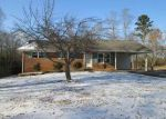 Foreclosed Home in Athens 37303 229 COUNTY ROAD 439 - Property ID: 4245892