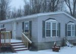 Foreclosed Home in Grant 49327 914 E 128TH ST - Property ID: 4246705