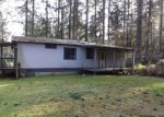 Foreclosed Home in Anderson Island 98303 10420 ANCHOR PL - Property ID: 4254377