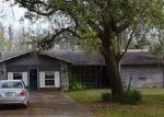 Foreclosed Home in Lutz 33548 2612 WILSON CIR - Property ID: 4254971