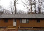 Foreclosed Home in Dingmans Ferry 18328 111 BEAVER CT - Property ID: 4255967