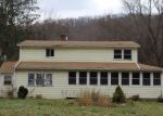Foreclosed Home in Roscoe 12776 3 WILCOX AVE - Property ID: 4256205