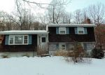 Foreclosed Home in Wallkill 12589 24 KINGS DR - Property ID: 4257789