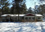 Foreclosed Home in Hayward 54843 10338 W COUNTY ROAD B - Property ID: 4261361