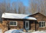 Foreclosed Home in Rock Creek 44084 1747 MORNING STAR DR - Property ID: 4263166