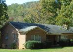 Foreclosed Home in Stanardsville 22973 2859 MIDDLE RIVER RD - Property ID: 4264350