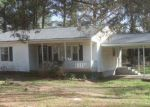 Foreclosed Home in Windsor 23487 17208 WOODLAND DR - Property ID: 4264393