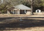 Foreclosed Home in Grand Bay 36541 6580 MARBELS RD - Property ID: 4270029
