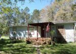 Foreclosed Home in Bunnell 32110 4811 BUTTERNUT AVE - Property ID: 4271083