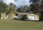 Foreclosed Home in Spring Hill 34610 16143 FRINGE TREE DR - Property ID: 4272011