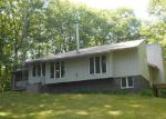 Foreclosed Home in Harrisville 48740 1798 ELLEN DR - Property ID: 70102836