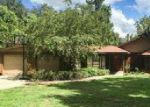 Foreclosed Home in Ocklawaha 32179 13225 SE 120TH ST - Property ID: 70121498