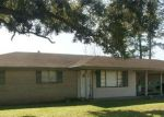 Foreclosed Home in Boutte 70039 14199 OLD SPANISH TRL - Property ID: 70125130