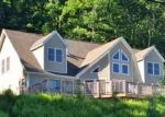 Foreclosed Home in Narrowsburg 12764 287 HANKINS RD - Property ID: 70130097