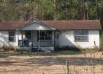 Foreclosed Home in Brunswick 31525 21 LETTUCE LN - Property ID: 6295071
