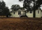 Foreclosed Home in Copperopolis 95228 3179 BEAVER CT - Property ID: 6299877