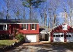 Foreclosed Home in Buxton 4093 234 OLD ORCHARD RD - Property ID: 6299976