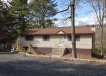 Foreclosed Home in East Stroudsburg 18302 5081 PINE RIDGE RD N - Property ID: 6308725