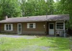 Foreclosed Home in Albrightsville 18210 11 BUCKHILL RD - Property ID: 6311973