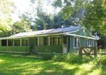 Foreclosed Home in Grass Lake 49240 8325 MOUNT HOPE RD - Property ID: 6312138