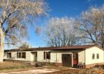 Foreclosed Home in Florence 81226 168 COUNTY ROAD 138 - Property ID: 6318209