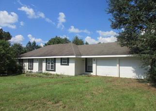 Foreclosure  id: 4041780