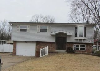 Foreclosure  id: 4113907