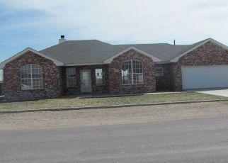 Foreclosure  id: 4124066