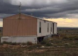 Foreclosure  id: 4213626