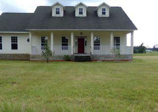 Foreclosure  id: 4223319