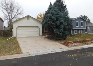 Foreclosure  id: 4229206