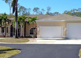 Foreclosure  id: 4246876