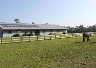 Foreclosure  id: 4257191